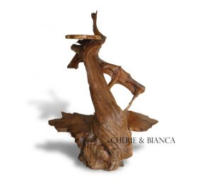 DSC00623 cheriebianca.com teak root cutside display figure 1