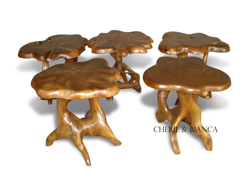 cheriebianca.com Teak Root Furniture Mushroom Table